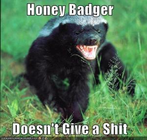 honey_badger1